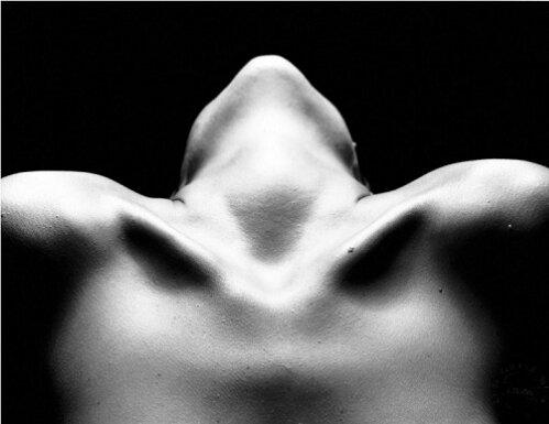 wpid-desnudos-artisticos