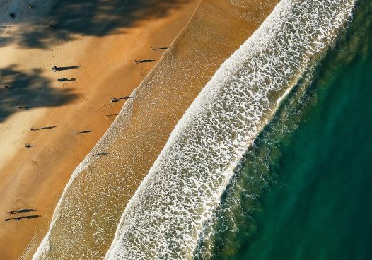 beach-bird-s-eye-view-colors-879832.jpg